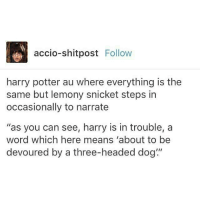 """~Winglock: accio-shitpost  Follow  harry potter au where everything is the  same but lemony snicket steps in  occasionally to narrate  """"as you can see, harry is in trouble, a  word which here means """"about to be  devoured by a three-headed dog"""" ~Winglock"""