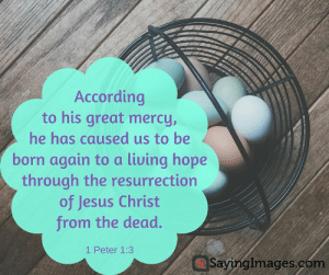 22 Easter Bible Verses on the Resurrection of Jesus #sayingimages #easter #bible #quotes: According  to his great mercy,  he has caused us to be  born again to a living hope  through the resurrection  of Jesus Christ  from the dead.  1 Peter 1:3  SayingImages.cóm 22 Easter Bible Verses on the Resurrection of Jesus #sayingimages #easter #bible #quotes