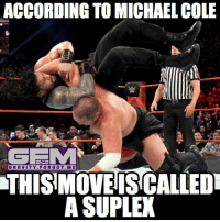 samoajoe romanreigns wrestling prowrestling professionalwrestling meme wrestlingmemes wwememes wwe nxt raw mondaynightraw sdlive smackdownlive tna impactwrestling totalnonstopaction impactonpop boundforglory bfg xdivision njpw newjapanprowrestling roh ringofhonor luchaunderground pwg: ACCORDING TO MICHAEL COLE  GEE M  GRAVITY FORGOT ME  THIS MOVE ISCALLEDT  A SUPLEX samoajoe romanreigns wrestling prowrestling professionalwrestling meme wrestlingmemes wwememes wwe nxt raw mondaynightraw sdlive smackdownlive tna impactwrestling totalnonstopaction impactonpop boundforglory bfg xdivision njpw newjapanprowrestling roh ringofhonor luchaunderground pwg
