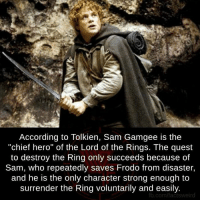 "Lord Of The Rings Meme: According to Tolkien, Sam Gamgee is the  ""chief hero"" of the Lord of the Rings. The quest  to destroy the Ring only succeeds because of  Sam, who repeatedly saves Frodo from disaster,  and he is the only character strong enough to  surrender the Ring voluntarily and easily.  fb.com/factsweird"