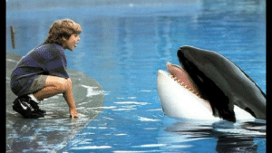 According to visual effects supervisor Walt Conti, one of the animatronic dummies used during the filming of Free Willy (1993) was so realistic that Keiko became sexually aroused by it: According to visual effects supervisor Walt Conti, one of the animatronic dummies used during the filming of Free Willy (1993) was so realistic that Keiko became sexually aroused by it