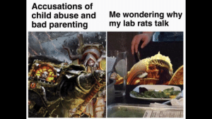 For the redditor requesting 40k cat memes. a friend shared this one today: Accusations of  child abuse and  bad parenting  Me wondering why  my lab rats talk For the redditor requesting 40k cat memes. a friend shared this one today