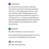 Animals, Ass, and Dogs: acetonystark  ok so since the Russo brothers confirmed  that animals and plants and the like all died in  the snap,. that means dogs died too,,,, and  lemme tell ya if ANYTHING happened to my  dog earth wouldn't even NEED the avengers l'd  mcfucking destroy thanos myself because  NO ONE FUCKING MESSES WITH MY DOG NOT  EVEN A CRUSTY ASS RAISIN WITH A ROCK  COLLECTION  tiredstarks  Me, after watching my cat turn to dust: :)  Every single living) Avenger,getting tf out of my  way: How is she holding that many knives  ruby-white-rabbit  Did John wick write these john wick could beat thanos
