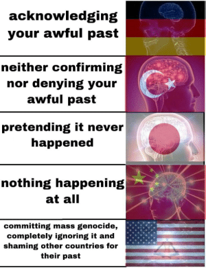 Never, Mass, and Genocide: acknowledging  your awful past  neither confirming  nor denying your  awful past  pretending it never  happened  nothing happening  at all  committing mass genocide,  completely ignoring it and  shaming other countries for  their past Hmmm