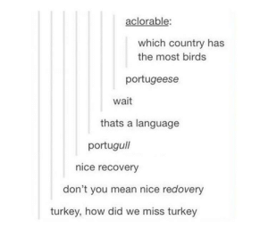 Birds, Mean, and Turkey: aclorable:  which country has  the most birds  portugeese  wait  thats a language  portugull  nice recovery  don't you mean nice redovery  turkey, how did we miss turkey Bird names