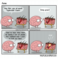 Awkward Yeti, Memes, and Yeti: Acne  Hey Skin, you all good?  Doing great!  Hydrated? Clean?  O2016 The Awkward Yet  the Awkward Yeti com  Glad to hear that. We'll  be seeing a lot of people  POP  this weekend and I want  to look our best.  theAwkwardyeti com Every. Time. (Via @theawkwardyeti)