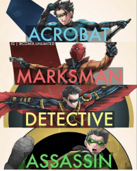 Family, Memes, and 🤖: ACROBAT  IG MARKS  DETECTIVE  ASSASSIN Who's your fav member of the Bat-Family? ⬇️Comment Below⬇️