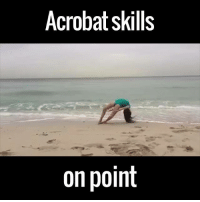 Dank, 🤖, and Via: Acrobat skills  on point So majestic... via SuperViral.TV