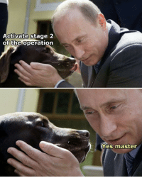 yes yes: Activate  stage 2  of the operation  Yes master