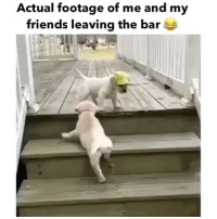 Funny, Memes, and Bar: Actual footage of me and my  friends leaving the bar the one with the hat tho