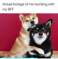 Best, Bff, and The Best: Actual footage of me reuniting with  my BFF The best feeling 🙌❤️