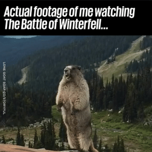 Accurate! 😱😂: Actual footage of me watching  The Battle of Winterfel Accurate! 😱😂