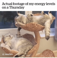 Energy, Awake, and Stay: Actual footage of my energy levels  on a Thursday  newsflare Must try to stay awake... 😂😴