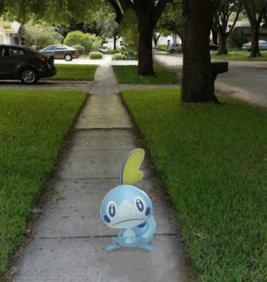 Target, Tumblr, and Gang: actual-haise:  SOBBLE GANG RISE UP