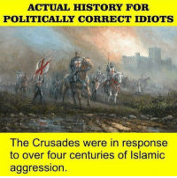 ACTUAL HISTORY FOR  POLITICALLY CORRECT IDIOTS  The Crusades were in response  to over four centuries of Islamic  aggression. ~Shieldmaiden