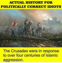 Memes, History, and 🤖: ACTUAL HISTORY FOR  POLITICALLY CORRECT IDIOTS  The Crusades were in response  to over four centuries of Islamic  aggression