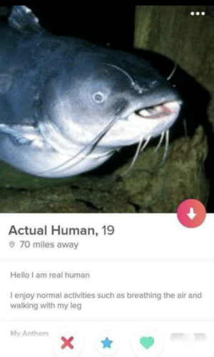 help guys i'm kinda nervous: Actual Human, 19  70 miles away  Hello I am real human  I enjoy normal activities such as breathing the air and  walking with my leg  My Anthem  X\ help guys i'm kinda nervous