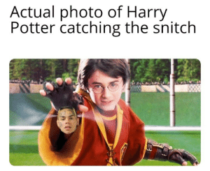 Detective Potter: Actual photo of Harry  Potter catching the snitch Detective Potter