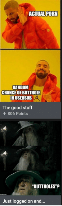 "Ironic, Good, and Porn: ACTUAL PORN  RANDOM  CHANCEOF BUITHOLE  IN USERSUB  The good stuff  806 Points  ""BUTTHOLES""  imgflip.com  Just logged on and... Ironic"