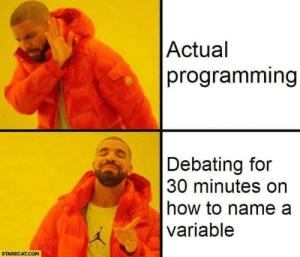 Developers truth: Actual  programming  Debating for  30 minutes on  how to name a  variable  STARECAT.COM Developers truth