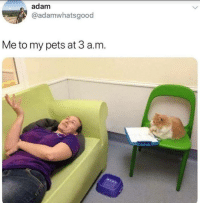Pets, Adam, and A&m: adam  @adamwhatsgood  Me to my pets at 3 a.m