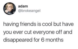 Friends, Cool, and MeIRL: adam  @brokeangel  having friends is cool but have  you ever cut everyone off and  disappeared for 6 months meirl