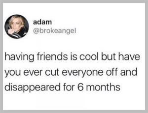 meirl: adam  @brokeangel  having friends is cool but have  you ever cut everyone off and  disappeared for 6 months meirl