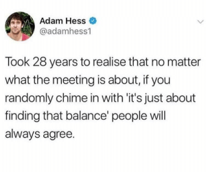 Hess, Adam, and Will: Adam Hess  @adamhess1  Took 28 years to realise that no matter  what the meeting is about, if you  randomly chime in with 'it's just about  finding that balance people will  always agree. It's just about finding that balance