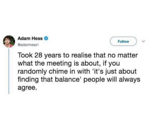 Hess, Adam, and Will: Adam Hess  Follow  @adamhess  Took 28 years to realise that no matter  what the meeting is about, if you  randomly chime in with 'it's just about  finding that balance' people will always  agree. Its just about finding a balance