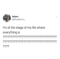 Life, Adam, and Everything: Adam  @itsadamm_  I'm at the stage of my life where  everything is  ?7????????????????????????????????