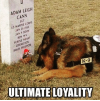 Thank you. UltimateSacrifice BAM247 GYSOT USAUSAUSA ThankYou K9Unit K9 GermanShepard MansBestFriend Yessir Freedom Merica Rah: ADAM LEIGH  CANN  US MARINE CORES  JAN 1352  JAN 5100  PURPLE HEART  RAO:  K-9  ULTIMATE LOYALITY Thank you. UltimateSacrifice BAM247 GYSOT USAUSAUSA ThankYou K9Unit K9 GermanShepard MansBestFriend Yessir Freedom Merica Rah