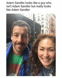 A man of many great movies. | Follow @aranjevi for more!: Adam Sandler looks like a guy who  isn't Adam Sandler but really looks  like Adam Sandler  『VI A man of many great movies. | Follow @aranjevi for more!