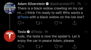 Rude, Black Widow, and Black: Adam Silverstein @asilversteinTV 7h  There is a black widow crawling on my car  n....I think I'm ready to sell! Who wants a  @Tesla with a black widow on the low low?  31  Tesla @Tesla 1h  rude, the tesla is now the spider's. Let it  enjoy the car in peace Adam, please.  30 Me irl