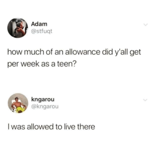 Me_irl by gabetheawesome1 MORE MEMES: Adam  @stfuqt  how much of an allowance did y'all get  per week as a teen?  kngarou  @kngarou  Iwas allowed to live there  > Me_irl by gabetheawesome1 MORE MEMES