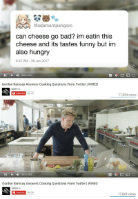 "Being Alone, Bad, and Funny: @adamantpangoro  can cheese go bad? im eatin this  cheese and its tastes funny but im  also hungry  9:42 PM 28 Jan 2017  II D 0:42/8:08  Gordon Ramsay Answers Cooking Questions From Twitter | WIRED  WIRED  Subscribe  17,824 views   II I 0:47/8:08  Gordon Ramsay Answers Cooking Questions From Twitter | WIRED  WIRED  Subscribe  764,749  17,824 views <p><a href=""http://catchaglimpseofalleble.tumblr.com/post/160882183184/libertarirynn-kidlazer-please-leave-gordon"" class=""tumblr_blog"">catchaglimpseofalleble</a>:</p>  <blockquote><p><a href=""https://libertarirynn.tumblr.com/post/160881273679/kidlazer-please-leave-gordon-alone-really"" class=""tumblr_blog"">libertarirynn</a>:</p>  <blockquote><p><a href=""http://kidlazer.tumblr.com/post/160880305139/please-leave-gordon-alone"" class=""tumblr_blog"">kidlazer</a>:</p>  <blockquote><p>please leave gordon alone</p></blockquote>  <p>Really though cheese is basically just cultivated mold. It's hard for it to go bad though I won't say impossible.</p></blockquote>  <p>That's a joke. Right?</p></blockquote>  <p>No? Hard cheeses will keep for months and months. You just need to cut extra mold off of them. Cheese like Gorgonzola/bleu cheese is almost entirely mold. I know I've eaten quite old bleu cheese with no issue. Soft cheeses like cottage or cream cheese are different story since they have a high moisture content. But even they take a while before they get bad. At least a few weeks. If you see mold it's probably best to toss them. Semi-soft cheeses like Gouda last awhile but not quite as long as hard ones.</p>"