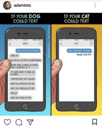 Borked: adamtots  IF YOUR CAT  COULD TEXT  IF YOUR DOG  COULD TEXT  DOG  CAT  Hey, how are things?  Hey, how are things?  Read 245 PM  OMG HI  SO MUCH STUFF IS HAPPENING  HERE WAS A BIRD OUTSIDE  AND I BORKED AT IT  IT FLEW AWAY IT WAS SO  SCARED  IPROTECTED THE HOUSE  ARE YOU PROUD OF ME  ARE YOU PROUD OF ME  HELLO  ARE YOU MAD AT ME