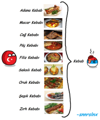 I know kebab means ''Turks'' but this had to be drawn, too ^^   -snnrslnx: Adana Kebab  Macar kebab  Cag Kebabi  Kebab  Filiz Kebab/  Saksili Kebab  Oruk Kebab  Sasik Kebabi  Zirh kebab/  Kebab  snnrslnx I know kebab means ''Turks'' but this had to be drawn, too ^^   -snnrslnx