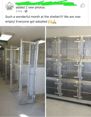 When everyone gets a permanent home to live in.: added 2 new photos  arison Countcthimal  ContelG  2 hrs  Such a wonderful month at the shelter!!!! We are now  HA  empty! Everyone got adopted When everyone gets a permanent home to live in.