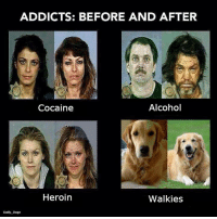 Doge, Heroin, and Love: ADDICTS: BEFORE AND AFTER  Cocaine  Alcohol  U.  Heroin  Walkies  Daily Doge Love me some good walkies