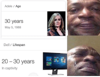 "<p>Hello. via /r/dank_meme <a href=""https://ift.tt/2zXPAMM"">https://ift.tt/2zXPAMM</a></p>: Adele Age  30 years  May 5, 1988  Dell / Lifespan  20 - 30 years  In captivity <p>Hello. via /r/dank_meme <a href=""https://ift.tt/2zXPAMM"">https://ift.tt/2zXPAMM</a></p>"