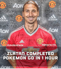 adidas  adlda8  CaiAmlbraFacts  HIBRA FACTS  ZLATAn COMPLETED  doPOKEMON GO IN 1 HOUR Simply Because The Pokemon Came To Zlatan.... 😂👌🏼 • Tag Friends 👇🏼