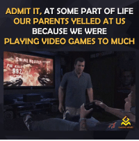 Video Games, Video Game, and Pig: ADMIT IT, AT SOME PART OF LIFE  OUR PARENTS VELLED AT US  BECAUSE WE WERE  PLAYING VIDEO GAMES TO MUCH  SWINE HOARD!  PIG Klusdi  GAMING MEMES