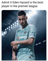 Memes, Premier League, and Best: Admit it Eden Hazard is the best  player in the premier league.  HYLN Agree? 👍❓