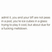 Fucking, Cool, and Forever: admit it, you and your bff are not peas  in a pod, you're ice cubes in a glass  trying to play it cool, but about due for  a fucking meltdowin Forever on the verge of a mental breakdown @mybestiesays