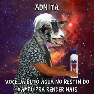 Pt-Br (Brazilian Portuguese), International, and Render: ADMITA  VOGE JABUTO AGUA NO RESTIN DO  XAMPU PRA RENDER MAIS