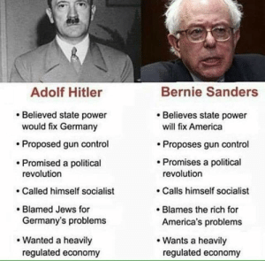 And the Left calls Trump Hitler: Adolf Hitler  Bernie Sanders  .Believed state power  Believes state power  would fix Germany  will fix America  Proposes gun control  Promises a political  .Proposed gun control  Promised a political  revolution  Called himself socialist  Blamed Jews for  revolution  . Calls himself socialist  . Blames the rich for  Germany's problems  America's problems  Wanted a heavily  Wants a heavily  regulated economy  regulated economy And the Left calls Trump Hitler