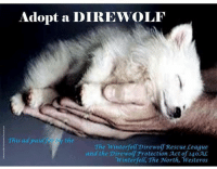 Like Kit Harington: Adopt a DIREWOLF  This ad paid by the  The Winterfell Direwolf Rescue League  and the Direwolf Protection Act of 140 AC  Winterfelt, The North, Westeros Like Kit Harington