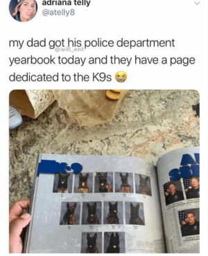 Animals, Dad, and Dogs: adriana telljy  @atelly8  my dad got his police department  yearbook today and they have a page  dedicated to the K9s  @will_ent  0 Dog Memes Of The Day 32 Pics – Ep40 #dogs #dogmemes #lovelyanimalsworld - Lovely Animals World