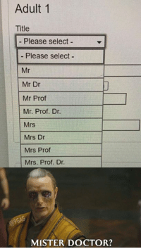 Dank, Doctor, and 🤖: Adult 1  Title  Please select -  - Please select  Mr  Mr Dr  Mr Prof  Mr. Prof. Dr.  Mrs  Mrs Dr  Mrs Prof  Mrs. Prof. Dr.  MISTER DOCTOR? It's... Strange.