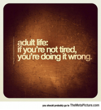 """Club, Life, and Tumblr: adult life:  if you're not tired  you're doing it wrong.  you should probably go to TheMetaPicture.com <p><a href=""""http://laughoutloud-club.tumblr.com/post/166821836910/truth-about-adult-life"""" class=""""tumblr_blog"""">laughoutloud-club</a>:</p>  <blockquote><p>Truth About Adult Life</p></blockquote>"""
